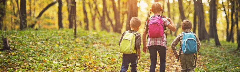 Two boys and a girl, wearing backpacks, walking beneath trees in late afternoon sun.