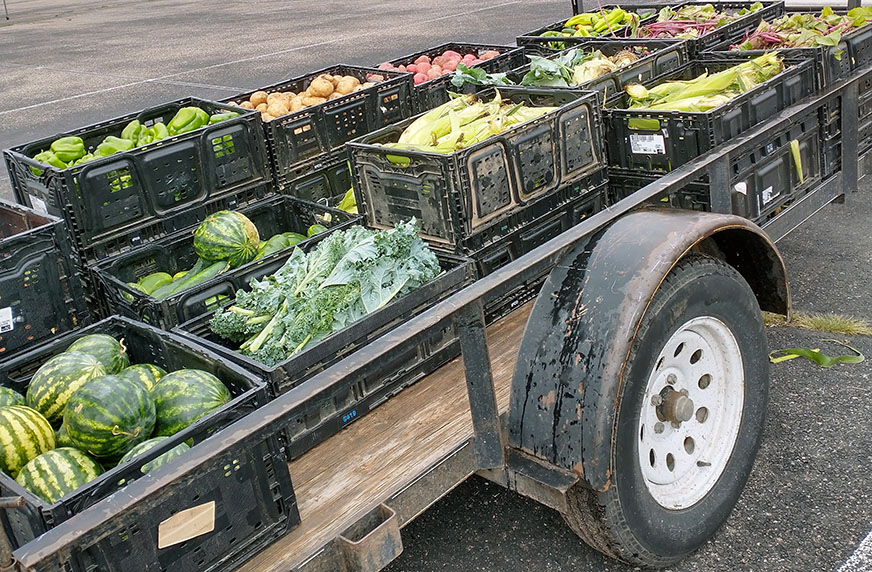 Flatbed trailer with boxes of fresh fruits and vegetables.